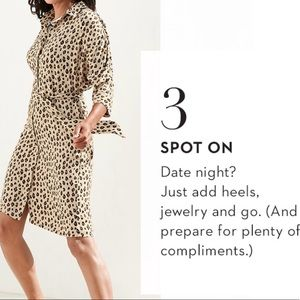 Chico's Dresses - Chico's Leopard Print Dress