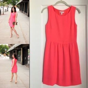 New With Rags J.Crew Camille Dress