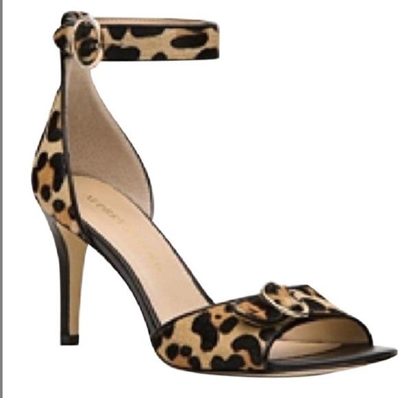 f0f9d80b1de2 Audrey Brooke Shoes - Audrey Brooke Leopard Print heels