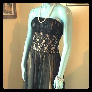 WHBM Boned Corset Tulle Dress