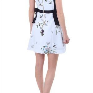 1c1f8abfaed3 Ted Baker London Dresses - Ted baker Sipnela Spring Meadow Dress with bows