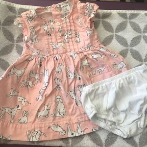 Carters pink Puppy dress with bloomers