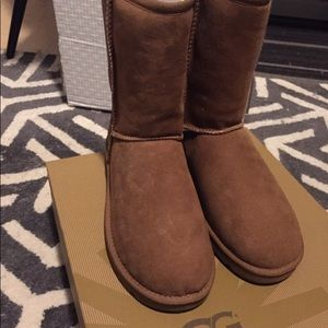 New in Box UGG Women's Classic Midcalf Boots