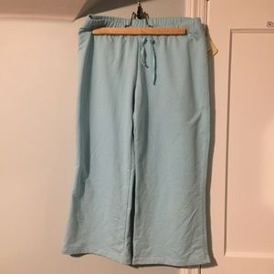Light Blue Sweatpants Cropped