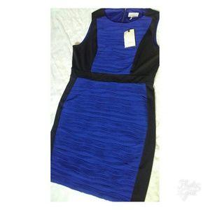 Dana Buchman Dresses - New Dana Buchman blue dress