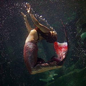 Meet your Posher, Mermaid Shannon