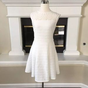 Taylor Dresses ivory lace fit & flare dress 6 $148