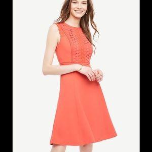 💓2X HP🎉🎊💓Ann Taylor lace trim flare dress 👗
