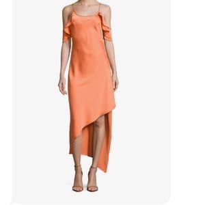Dresses & Skirts - Tangerine silk slip dress NEW w tags