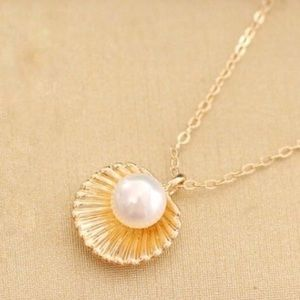Jewelry - Shell with pearl necklace
