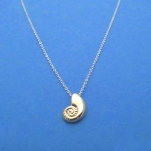 Jewelry - Conch seashell necklace