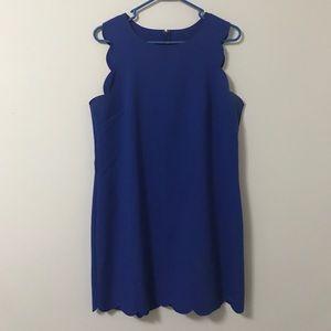 J. Crew Scallop dress