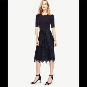 women's ann taylor plus size on poshmark