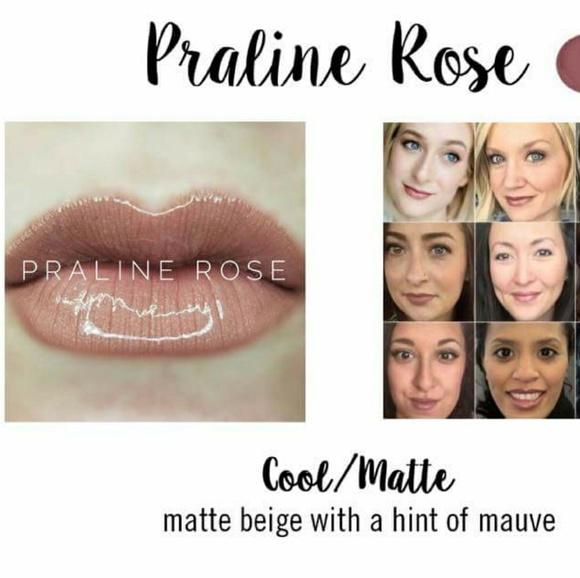 Lipsense Makeup New Praline Rose And Gloss Bundle Poshmark