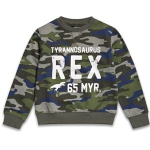 T-Rex Sweater Camo, Army Fatique, Dinosaur Boy