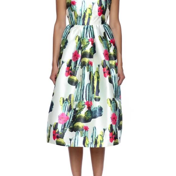 7b84f524b73 Blaque label cactus dress
