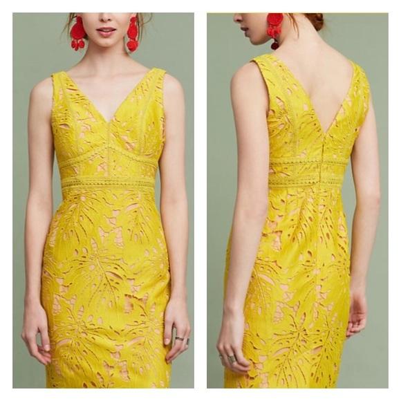 9df69cf6e4cc Anthropologie Dresses & Skirts - Anthropologie Gardenia Lace Column Dress