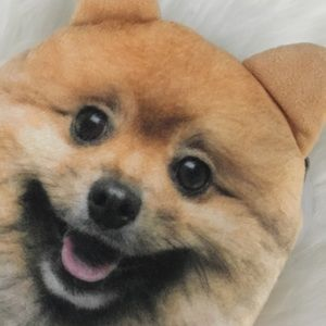 Bags Pomeranian Dog Puppy Coin Purse Wallet Zip Poshmark
