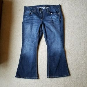 Maurices Short Distressed Bootcut Jeans