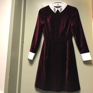 Ted Baker Dresses - Ted Baker Dress (Never worn)