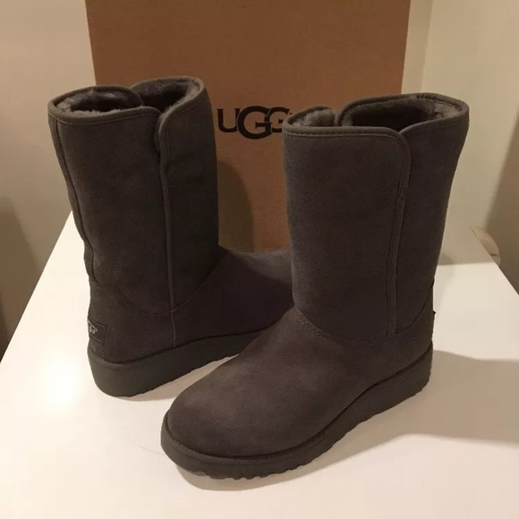 832cea0cd4188 New Ugg Gray Amie Suede boots ❤️size 5 or 6 avail