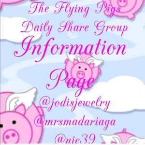 Information Page -The Flying Pigs Daily Share Grp
