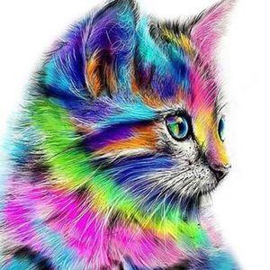 Other - Posh Cat