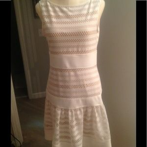 Very cute size 8 cream Taylor dress