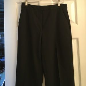 Pants - Beautiful dress slacks. Good for evening or office
