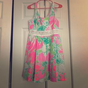 Lilly Pulitzer Rosemarie Dress Size 6