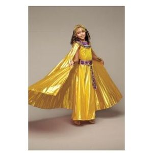 Chasing Butterflies Costumes - Cleopatra Girls Costume from Chasing Fireflies  sc 1 st  Poshmark & Chasing Butterflies Costumes | Cleopatra Girls Costume From Chasing ...