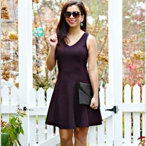 Dex Fit and Flare V Neck Dress