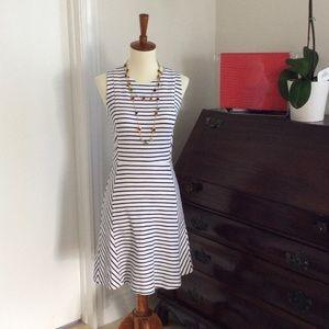 J. Crew Blue and White Striped Dress 00