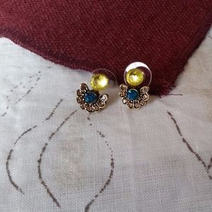 Jewelry - Contrasting Exotic Earrings