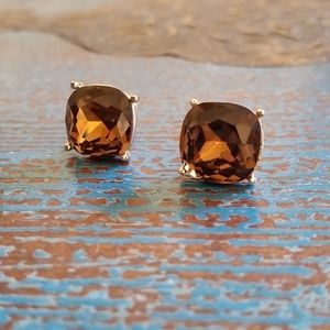 Large Brown Jeweled Studs