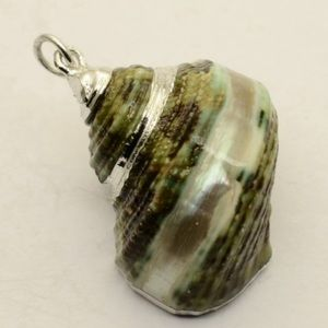 Jewelry - JUST IN Natural Seashell Pendant