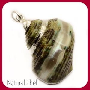 Jewelry - Natural Seashell Pendant