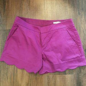 Magenta Scallop Shorts