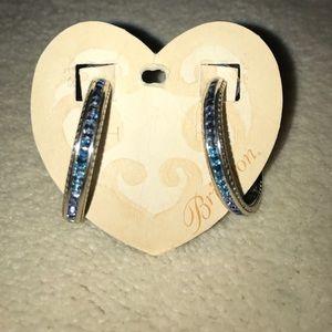 Blue Ombré Earrings