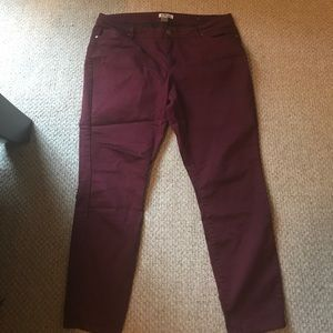 Denim - Blue Spice Wine colored jeans