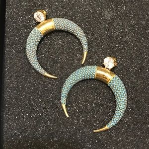 Noir Turquoise Horn Earrings