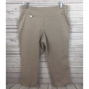 Alfani Stretch Beige Cropped Pants Size 10