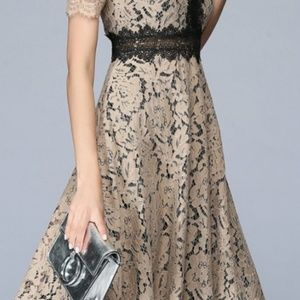6bd11f61 Vicky and Lucas Dresses | Vicky Lucas Khaki Black Lace Fit Flare ...