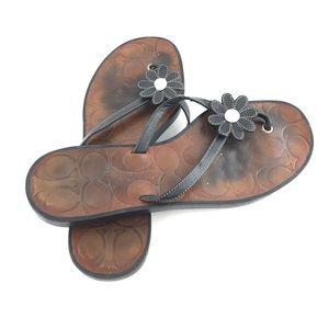 77b1f9671 Coach Shoes - Coach Daisy Flower Leather Flip Flop Thong Sandals
