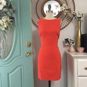✨❗️ LAST CHANCE ❗️✨ ALYX Petite Orange Dress 8