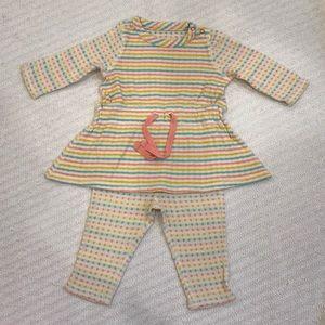 Stem Baby