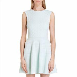 Ted Baker Frinca Textured Mint Dress