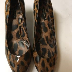 Dolce  & Gabbans Leopard Kitten SOLD ASK TO FIND