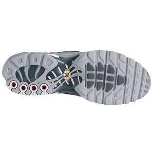Nike Shoes - Nike Air Max Plus Tn sneakers