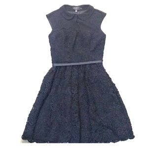 Ted Baker Lace and Chiffon Skater Dress